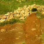 """""""Moroccan Field Stones"""", Morocco (from Lifeslices, 2009)"""